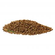 Coriander Seeds (100 Gr)