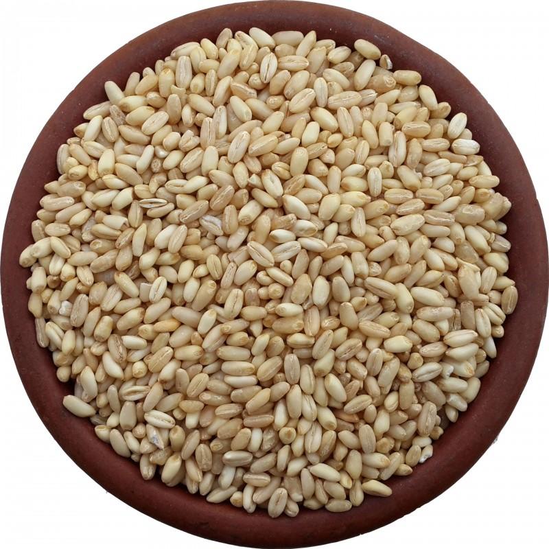 Wheat (500 gr)